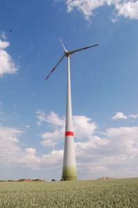 DSC 5435 Ingersheim szelerom 20120618